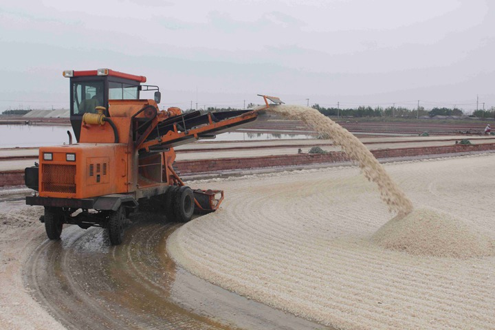 Shuliy salt harvesting machine
